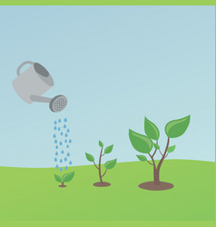 watering small plants vector image
