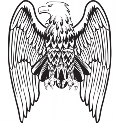 eagle with the lowered wings vector image vector image