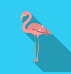 flamingo icon in flate style isolated on white vector image vector image