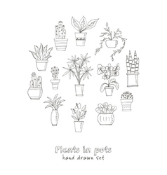 Set of plants in a pot Hand drawn doodle sketch vector image