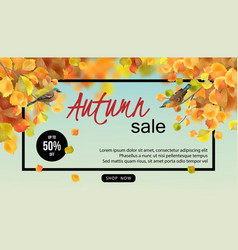 Autumn sale design vector
