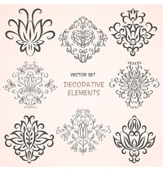Decorative floral design elements vector image vector image