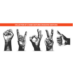 engraved style hand gestures collection vector image