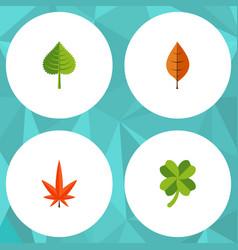 Flat icon maple set foliage aspen hickory and vector