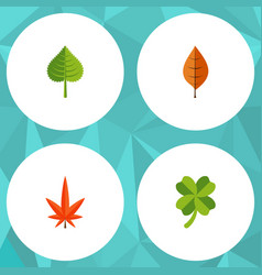 Flat icon maple set of foliage aspen hickory and vector