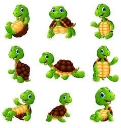 happy turtle cartoon collection set vector image