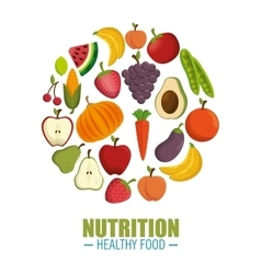 nutrition healthy food concept vector image