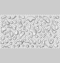 transparent gray drops vector image
