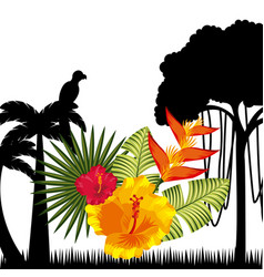 Tropical flowers design vector