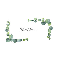 Watercolor wreath with green eucalyptus vector