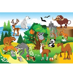 Cartoon animals in forrest vector