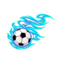 Championship soccer ball or football vector image
