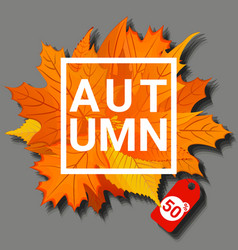 autumn concept banner cartoon style vector image