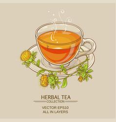 cup of safflower tea vector image