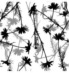 floral seamless pattern with camomile silhouettes vector image