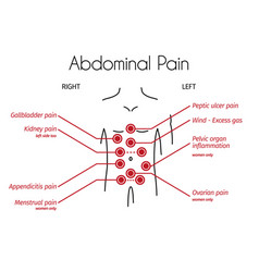 infographic abdominal pain types vector image