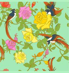 Paradise flycatchers vector
