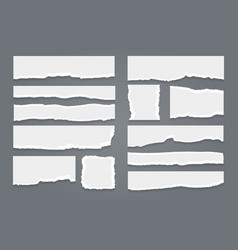 ripped white paper sheet set vector image