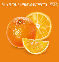 Whole orange with slices on an orange background vector