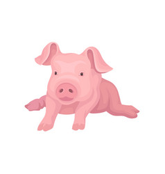 Adorable pink piglet lying isolated on white vector