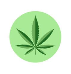 cannabis green vector image