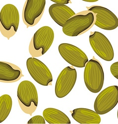Pumpkin Seeds vector image