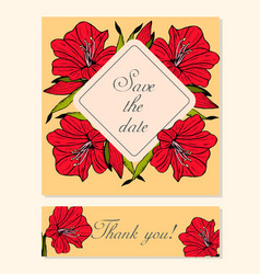 set of cards with amaryllis floral motifs vector image