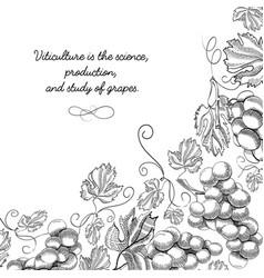 typography design original card sketch vector image