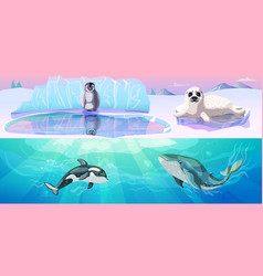 colorful arctic animals horizontal banners vector image