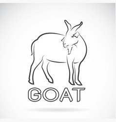 a goat on a white background wild animals vector image vector image