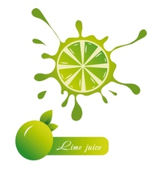 Lime juice vector image