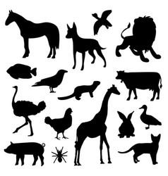 animal farm pet wildlife zoo icon vector image