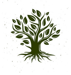 beautiful tree classic style drawing logo or icon vector image