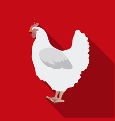 chicken icon in flate style isolated on white vector image