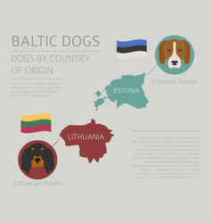 Dogs by country of origin baltic dog breeds vector