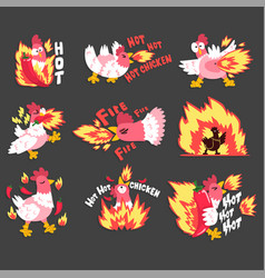 hot spicy chicken set rooster on fire creative vector image