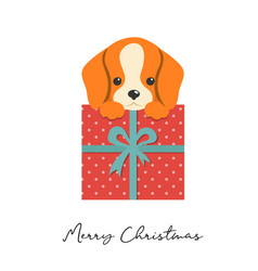 Merry christmas puppy cute small dog vector