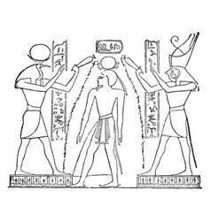 Ramses iii vintage vector