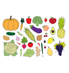 set sketch colored vegetables fruit vector image