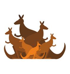 Kangaroo family kind of australian wallaby herd vector