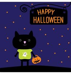 Black cat with halloween pumpkin bucket stars vector