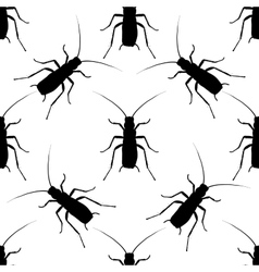 Seamless pattern with cockroach blattella vector image vector image