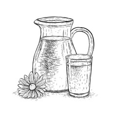 Hand drawn milk jug and glass milk with daisy vector