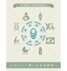 Maternity Infographic Template vector