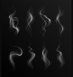 realistic smoke steam collection transparent vector image