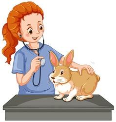 Vet examining little bunny vector image