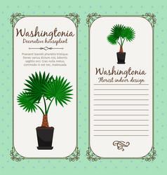 vintage label with washingtonia plant vector image vector image