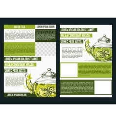 Flyer for green tea vector image vector image