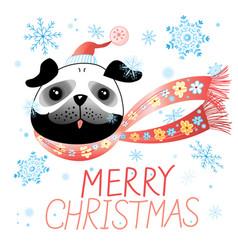 christmas card with pug vector image