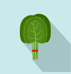 Group of spinach leaves icon flat style vector